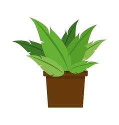 Plant pot decoration office nature vector