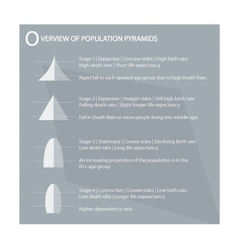 The four type of population pyramids charts vector