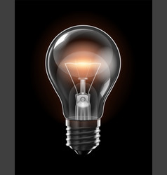 Transparent glowing bulb with a yellow filament vector