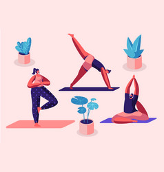 yogi women group doing yoga exercises on mats vector image