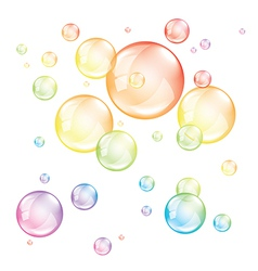 colored transparent bubbles isolated vector image