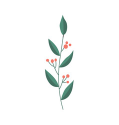 flat abstract green plant with berry icon vector image vector image