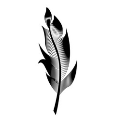 stylized bird feather linear object for vector image vector image