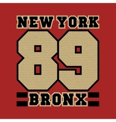 New York striker bronx the best in the team vector image vector image