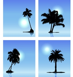 Set of palm tree silhouettes vector image vector image