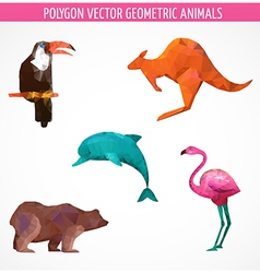 collection of colorful polygonal animals vector image vector image