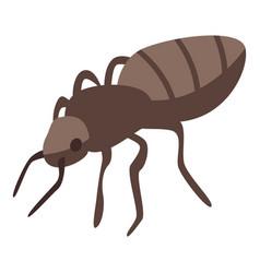 Ant icon isometric style vector