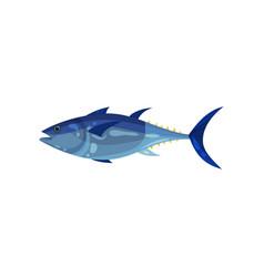 Bright blue tuna side view predatory fish sea vector