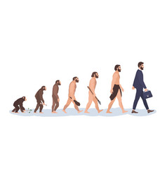 Human evolution stages evolutionary process and vector