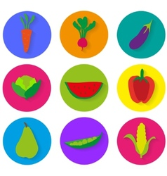 Vegetables icons graphics vector