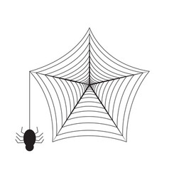 Isolated spider web vector