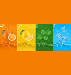 Juicy and fresh fruit orange lemon mint ice water vector