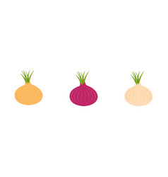 onion ripe bulb with green sprout icon set line vector image