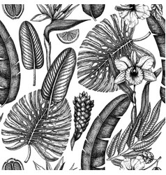 tropical flora seamless pattern plants vector image
