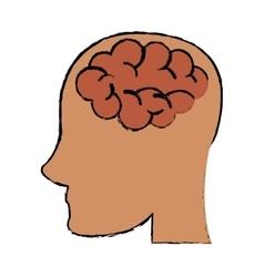 sketch person head brain think vector image