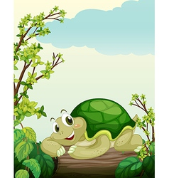 A turtle lying on dry wood vector image vector image