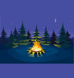 Bonfire in night spruce forest vector
