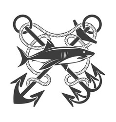 emblem with shark and crossed anchors in ropes vector image