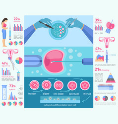 in vitro fertilization flat infographic template vector image