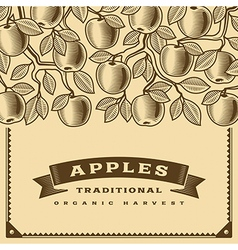 Retro apple harvest card brown vector image