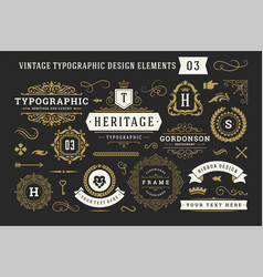 vintage typographic decorative ornament design vector image