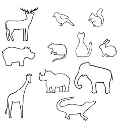 outline wild animal vector image