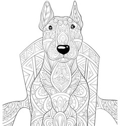 Adult coloring bookpage a cute dog on chair vector