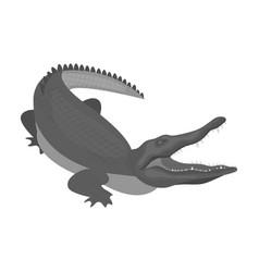 crocodile dangerous predator reptile nile vector image
