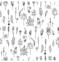 Seamless pattern with floral seedsBlack and white vector image