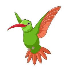 cartoon smiling hummingbird vector image