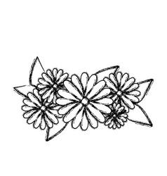 Blurred silhouette flowers bouquet floral design vector