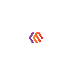 abstract shape line colored logo vector image