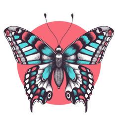 Beautiful butterfly tattoo beauty symbol vector