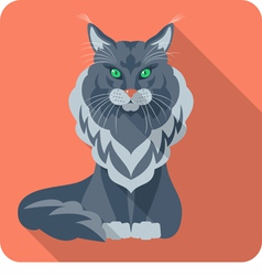 Cat Maine Coon icon flat design vector image