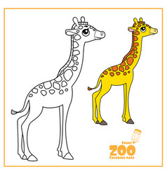 cute cartoon little giraffe color and outlined on vector image