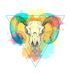 Hipster animal skull on watercolor background vector
