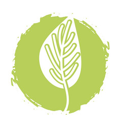 Leaf plant isolated icon vector