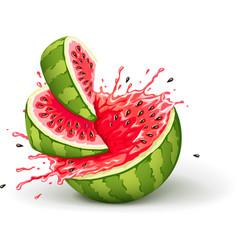 Juicy ripe watermelon cuts vector image vector image