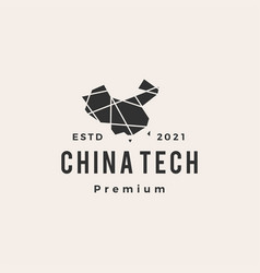 china tech hipster vintage logo icon vector image