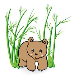 cute Bear in Bamboo Forrest 04 vector image