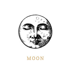 Moon hand drawn in engraving style vector