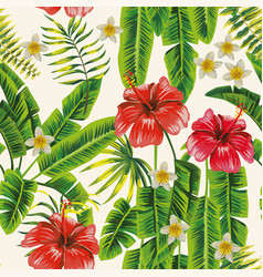 palm leaves and hibiscus plumeria flowers vector image