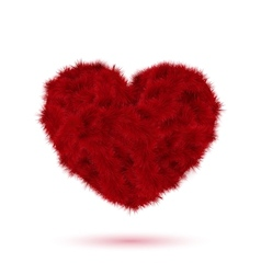 Red fur heart for Your Valentine design vector