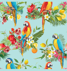 tropical fruits flowers and parrot background vector image vector image