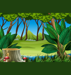forest scene with stump tree and mountains vector image