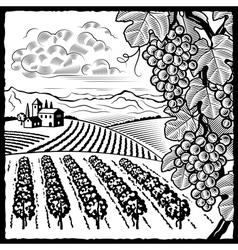 Vineyard landscape black and white vector image vector image