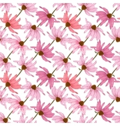 Hand drawn seamless pattern with echinacea flowers vector image