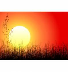 magic sunset vector image