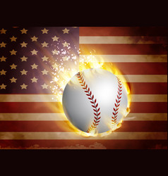baseball ball on flag vector image