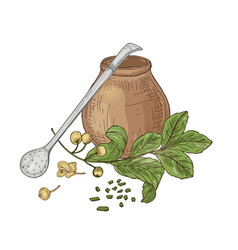 Composition with mate tea in traditional calabash vector